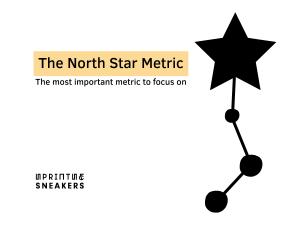 The Nort Star metric intro image